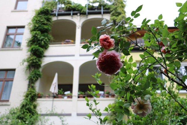 Gartentag Mai 2016